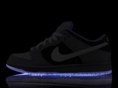 PREMIER x Nike SB Dunk Low Pro Preview (Alexandre Hoang)