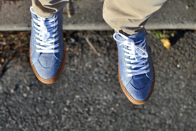 Pointer Seeker IV Chambray
